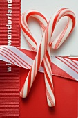 Two candy canes for Christmas
