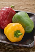 Three peppers in wooden dish