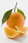 Orange with stalk and leaf, orange wedges