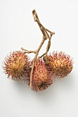 A cluster of three rambutans