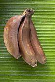 Red bananas on leaf