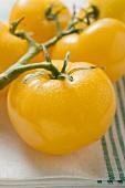 Five yellow cherry tomatoes on tea towel