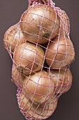 Brown onions in net (close-up)