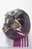 A round aubergine with drops of water on tea towel