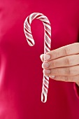 Hand holding candy cane