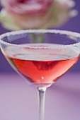 Rose liqueur in glass with sugared rim