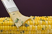 Brushing corn on the cob with herb butter