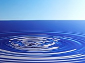Concentric ripples in water