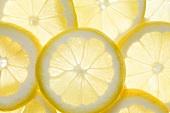 Mehrere Zitronenscheiben (durchleuchtet)