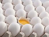 Frische Eier im Eierkarton, eines aufgeschlagen (Close Up)
