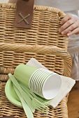 Woman with picnic basket and picnicware