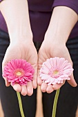 Woman holding two gerberas in outstretched hands