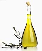 Olive oil in carafe, olive sprig beside it