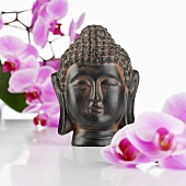 Buddha head with orchids