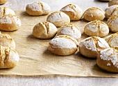 Organic bread rolls on baking parchment