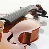 Violin (detail)