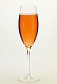 Glas rosé Champagner
