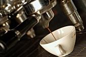 Making espresso