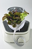 Bowl of lettuce with tape measure on scales