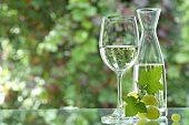 White wine in glass and carafe, green grapes