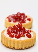Two individual redcurrant flans with custard filling