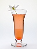 Sparkling wine cocktail with flower