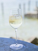 Glass of white wine with ice cubes on table at lakeside