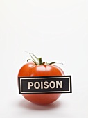 Tomato with a 'POISON' label