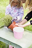 Mother and daughter repotting thyme