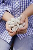 Kind hält eine Handvoll Kieselsteine