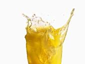 Orange juice splashing out of a glass