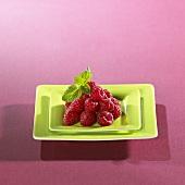 Fresh raspberries in square green dish