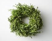 Green Wreath on White