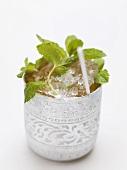 Cold peppermint tea in silver beaker