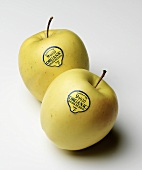 Two Organic Golden Delicious Apples on White