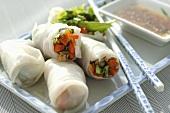 Vietnamesische Frühlingsrollen mit Schwein und Gemüse gefüllt