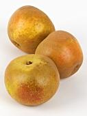 Three Russet apples