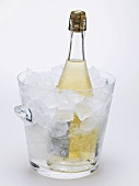 Bottle of sparkling wine in ice bucket