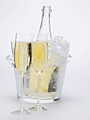 Two glasses of sparkling wine, wine bottle in ice bucket
