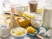 Verschiedene Milchprodukte, Milchshakes und Käsesorten