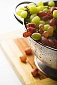 Rote und grüne Trauben im Fussseiher