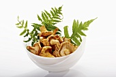 Chanterelles with fern fronds in white bowl