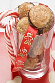 Gingerbread and candy canes (Christmas)