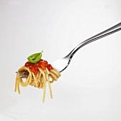 Spaghetti with tomato sauce on fork