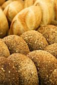 Fresh Semolina and Ciabatta Bread