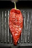 Rote Paprikaschote in einer Grillpfanne
