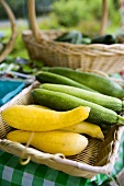 Summer Squash and Zucchini in Basket at Farmer's Market