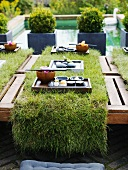 Laid table with turf and sushi tray out of doors