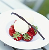 Fresh strawberries with vanilla ice cream and vanilla pod