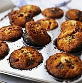 Cranberry muffins in a muffin tin